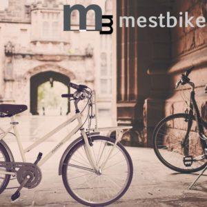 mestbike-storiadellabici-origine